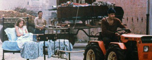 Il bisbetico domato – Film Completo